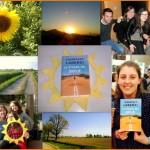 strada del sole - Chiara Borando